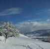 Winter-2013[1]