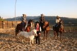 pferdefoto-familie-zumi[1]