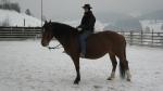 Nicole am Trainieren ohne Sattel mit Lolypop