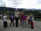 Ponys Ohrengarne